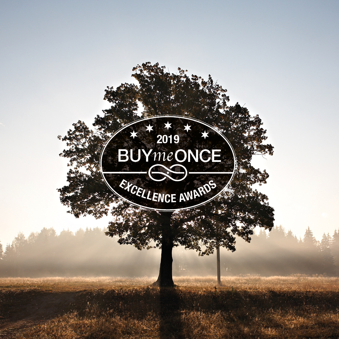 SOLID WINS IN THE 2019 BUYMEONCE EXCELLENCE AWARDS